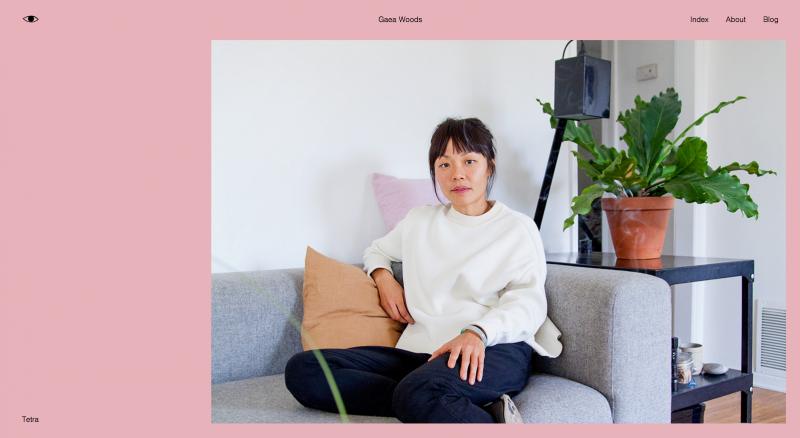 Web Design Showcase February